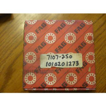 New Original and high quality 6213.2RSR.C3  Fag Bearing