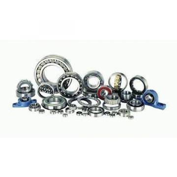 NSK Original and high quality Bearing B22-19.C3