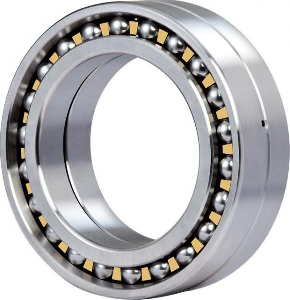 1221X Original famous brands Bower Cylindrical Roller Bearings