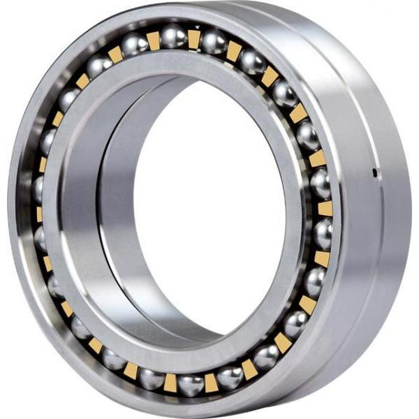 1236X Original famous brands Bower Cylindrical Roller Bearings #1 image